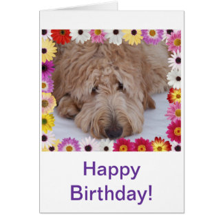 GoldenDoodle Dog in Colorful Flowers Birthday Card