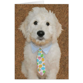 Goldendoodle puppy Easter card