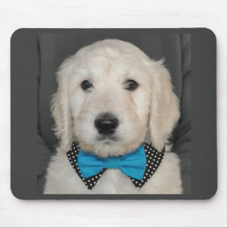 Goldendoodle puppy in bow tie  mouse pad