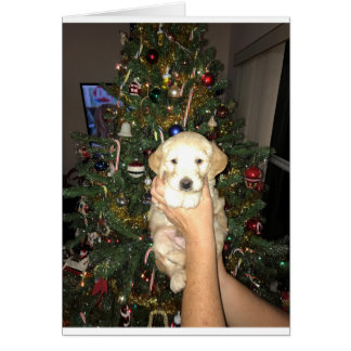GoldenDoodle Puppy With Christmas Tree Card