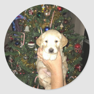 GoldenDoodle Puppy With Christmas Tree Classic Round Sticker