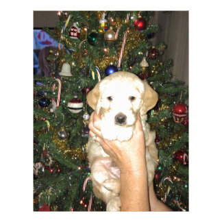 GoldenDoodle Puppy With Christmas Tree Letterhead