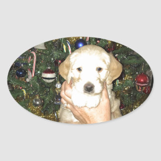 GoldenDoodle Puppy With Christmas Tree Oval Sticker