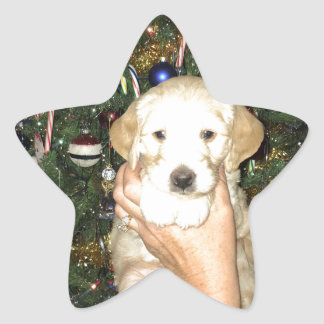 GoldenDoodle Puppy With Christmas Tree Star Sticker