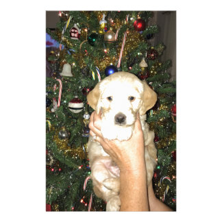 GoldenDoodle Puppy With Christmas Tree Stationery Design