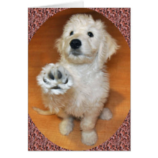 Goldendoodle Talk to the Paw card