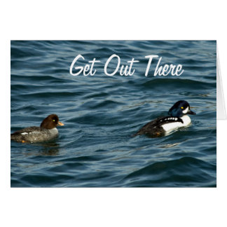 Goldeneye Ducks Out There Card