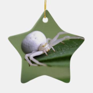 Goldenrod crab spider or flower crab spider ceramic star ornament