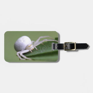 Goldenrod crab spider or flower crab spider luggage tag