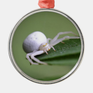 Goldenrod crab spider or flower crab spider Silver-Colored round ornament