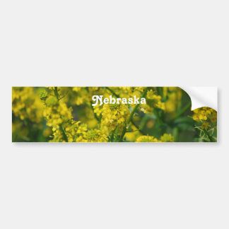 Goldenrod Nebraska Bumper Sticker