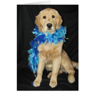 Goldens Feathers Galore Card
