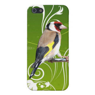 GOLDFINCH BIRD,FINCH,FINCHES BIRDS CASE FOR THE iPhone 5
