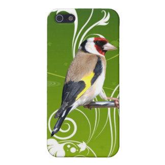 GOLDFINCH BIRD,FINCH,FINCHES BIRDS iPhone 5/5S CASE