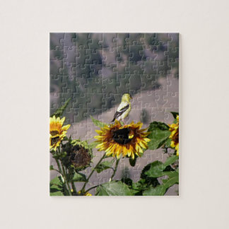 Goldfinch in the Sunflower patch Jigsaw Puzzle