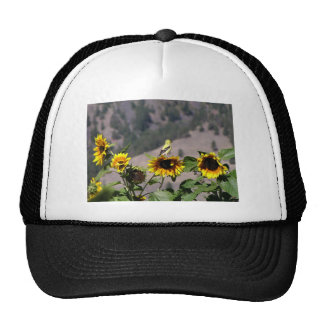 Goldfinch in the Sunflower patch Trucker Hat