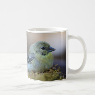 Goldfinch on moss coffee mug