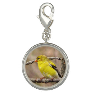 Goldfinch Photo Charm