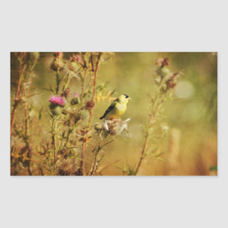 Goldfinch Photo Sticker