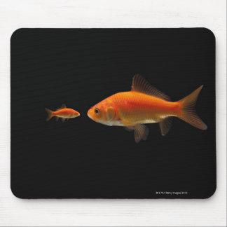 Goldfish 4 mouse pad
