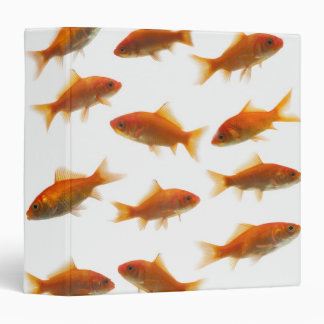 Goldfish Binders