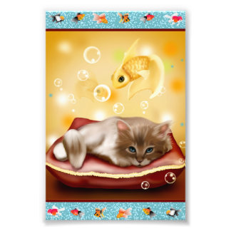 Goldfish Frame with fluffy Sleepy kitten on pillow Photographic Print