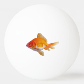Goldfish Pingpong Ball