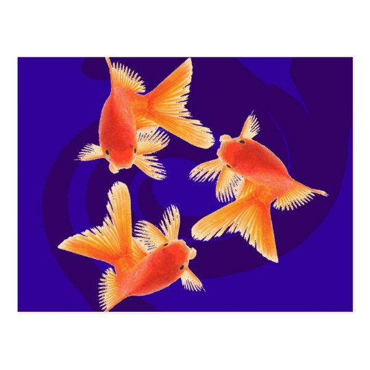 Goldfish Postcard
