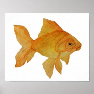 Goldfish Poster