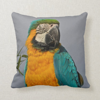 Goldie Blue Pillow