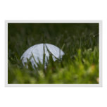 golf ball hiding poster