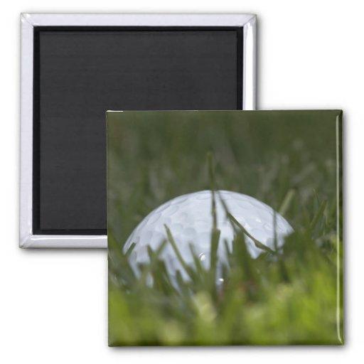 golf ball hiding refrigerator magnet