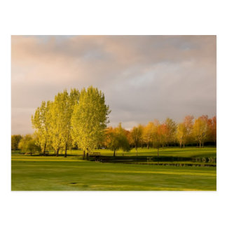 Golf Course in Autumn Postcard
