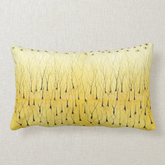 Golgi lumbar pillow