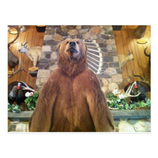 Goliath Space Farms Zoo World's Largest Bear Postcard