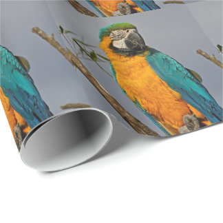 Golide Blue Wrapping Paper