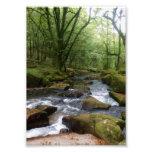Golitha Falls River Fowey Cornwall England Art Photo