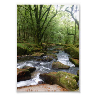 Golitha Falls River Fowey Cornwall England Photo Print