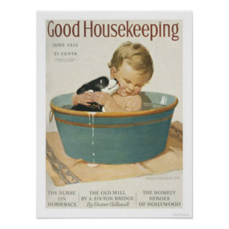 Good Housekeeping Poster