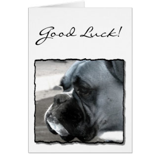 Good Luck Boxer greeting card