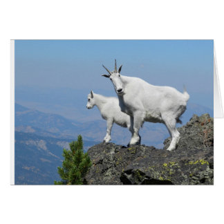 Good Luck Card with Mountain Goat