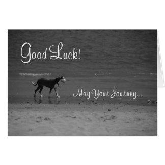 Good Luck - Dog on the Beach Card