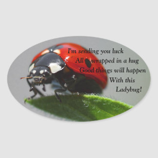Good Luck Ladybug Oval Stickers