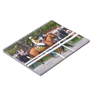 Good Magic - Breeder's Cup Champion Notebook
