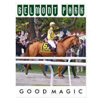 Good Magic - Breeder's Cup Champion Postcard