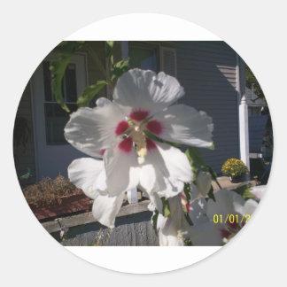 Good Morning Flower Round Sticker
