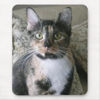Good Morning Kitty! Calico will brighten your day! Mouse Pad