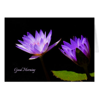 Good morning cards good morning greeting cards good morning good morning note card with purple water lilies negle Images