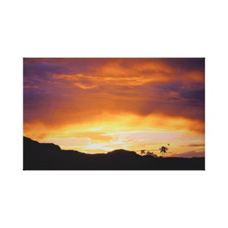 Good Night Moab Canvas Print
