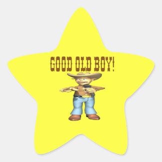 Good Old Boy Star Sticker